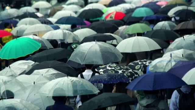 vídeos de stock e filmes b-roll de japanese businessman going to work in the morning with an umbrella on a rainy day - guarda chuva