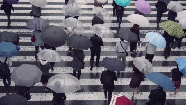 vídeos y material grabado en eventos de stock de empresario japonés caminando con un paraguas - recesión