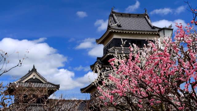 日本の城ます。 - 城点の映像素材/bロール
