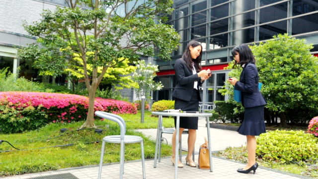 Japanese Corporate Professional Business Women Traditional Greeting For Meeting video