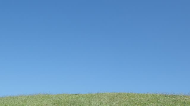 Japanese elementary school girl running in the blue sky - rear view