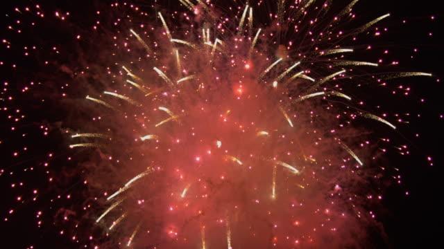 日本の花火のパーティクル スローモーション ビデオ
