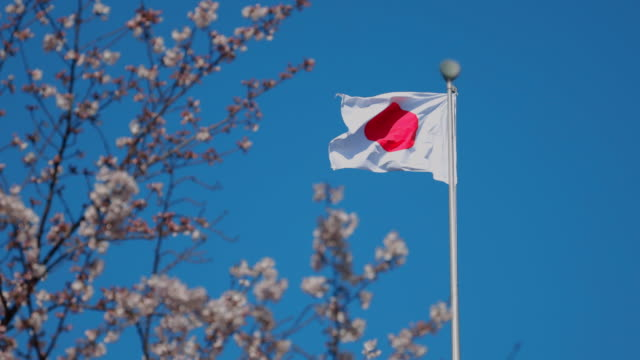 japanese flag fluttering against the blue sky - bandiera nazionale video stock e b–roll