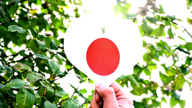 Japanese Flag on Heart Shape