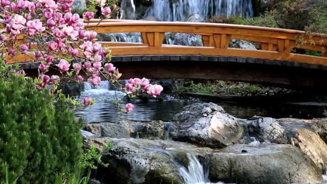 Japanese Garden in spring video
