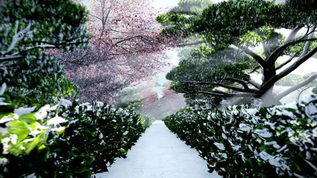 冬、太陽が輝くツリー間で日本庭園 - 冬点の映像素材/bロール