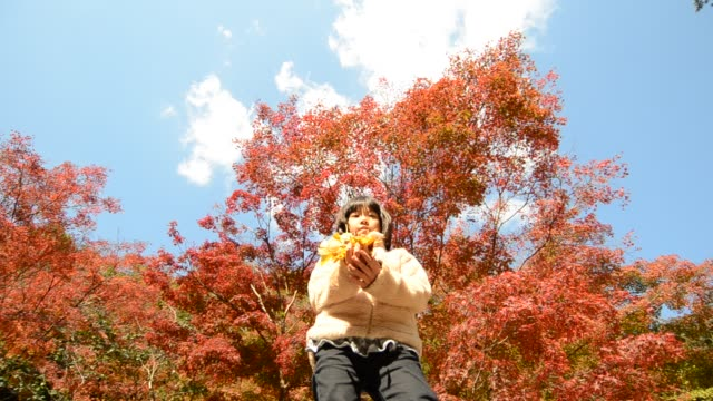 japanische mädchen spielen mit herbstlaub - ahorn stock-videos und b-roll-filmmaterial