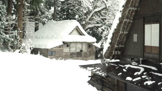 白川村で松林に属している日本の家 - 冬点の映像素材/bロール