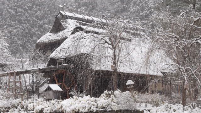 Japanese House in Winter video