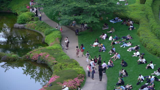japanska människor koppla av i parken på gräset i helgen - park bildbanksvideor och videomaterial från bakom kulisserna