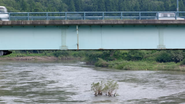 道路橋と車で日本の川。 - 川岸点の映像素材/bロール