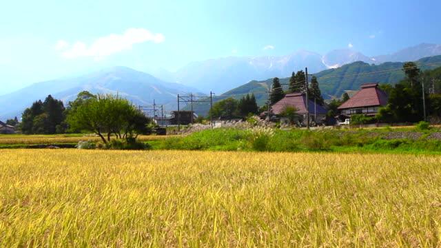 日本風景 - 非都市風光 個影片檔及 b 捲影像
