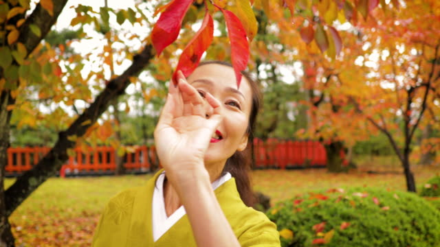 japanese woman walking in the forest in kyoto japan - woman portrait forest video stock e b–roll