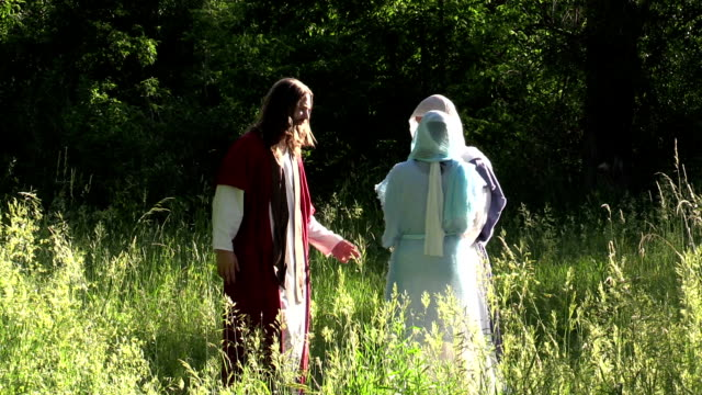 Jesus and disciples walk in sunny field video