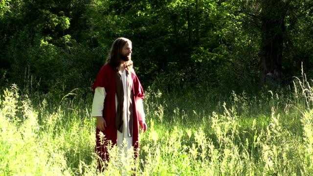 vídeos de stock e filmes b-roll de jesús prays com disciples em campo ensolarado - cristo redentor