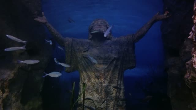 Jesus statue and many fishes in aquarium Jesus statue and many fishes in aquarium cristo redentor stock videos & royalty-free footage