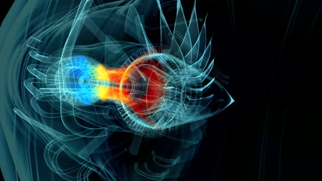 Jet engine x-ray blue transparent with temperature map video