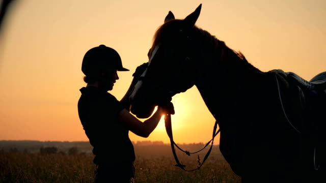 jockey lady is stroking a mare in the open air - sella video stock e b–roll