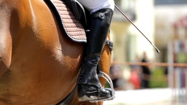 vidéos et rushes de botte d'équitation de jockey - dressage équestre