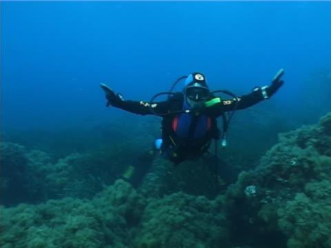 vídeos de stock, filmes e b-roll de jocose mergulhador – pal - equipamento de esporte aquático