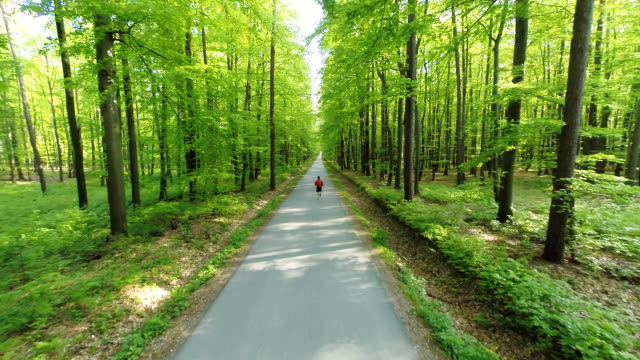 HD HELI: Jogging On A Road Through Forest video