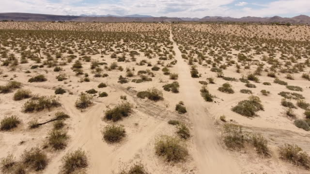 Joshua Tree desert landscape Aerial view of Mojave desert in Palm Springs during summer day, with Joshua trees mojave desert stock videos & royalty-free footage