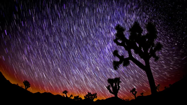 Joshua Tree Star Trails video