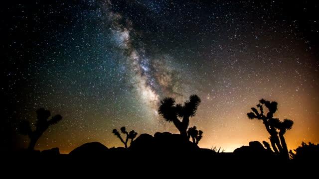 TIME LAPSE: Joshua Tree under Milky Way