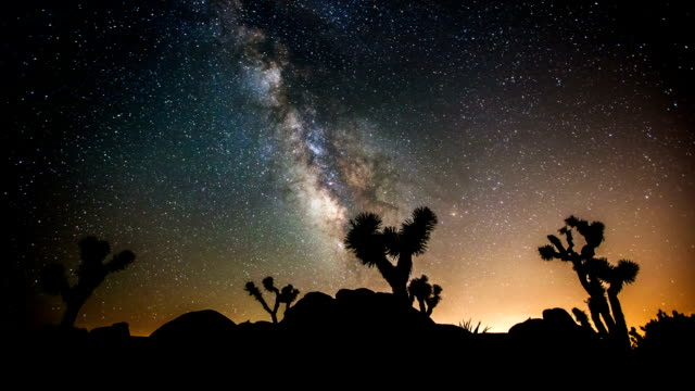 time lapse: joshua tree sotto la via lattea - astronomia video stock e b–roll