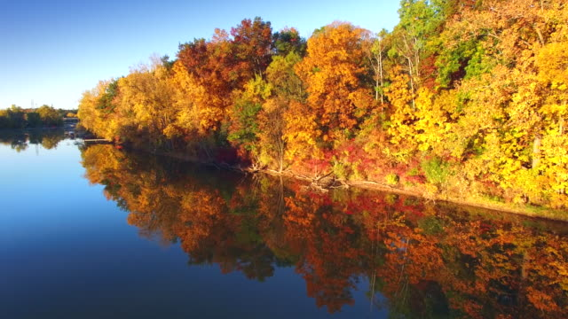 Journey Amid Colorful Autumn Foliage at Rivers Edge video