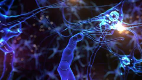 vídeos de stock e filmes b-roll de viagem através multipolar células. sinapse. rede. tecno azul. loopable. cérebro. - biologia