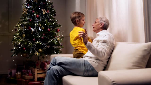 Joyful eldelry man having fun with his grandson Enjoy home atmopshere. Cheerful smiling aged man sitting on the couch and resting with his little grandson while waiting for Christmas setter dog stock videos & royalty-free footage