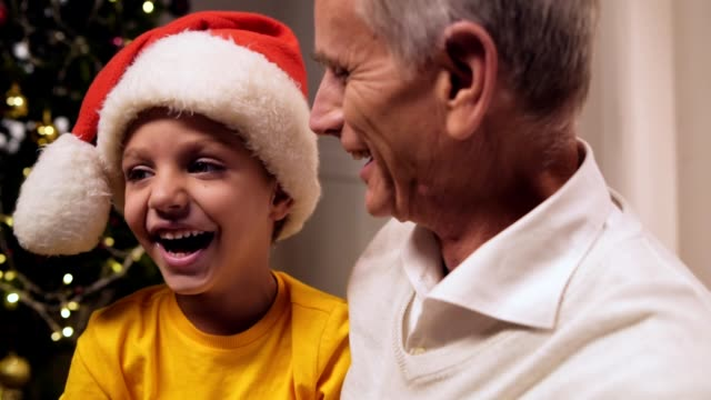 Joyful elderly man having fun with his grandson Positive emotions. Cheerful smiling elderly man sitting near Christmas tree with his grandson while having fun at home setter dog stock videos & royalty-free footage