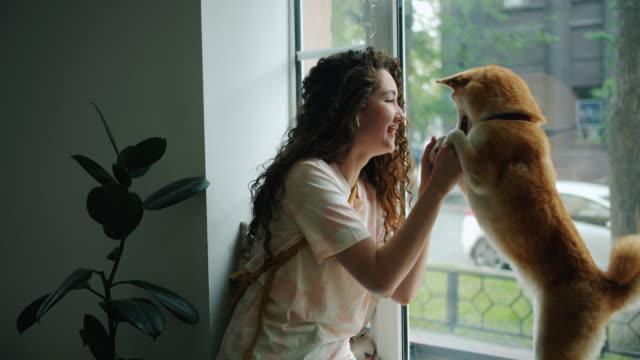 joyful girl lyssnar på musik via hörlurar och dansar med hund i kaféet - videor med headphones bildbanksvideor och videomaterial från bakom kulisserna