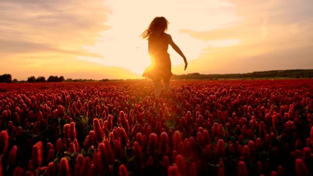 slo mo joyful girl running among flowers at sunset - kameraåkning på räls bildbanksvideor och videomaterial från bakom kulisserna