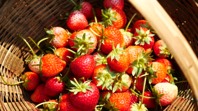 Juicy strawberries with panning movement , 4k(UHD) video