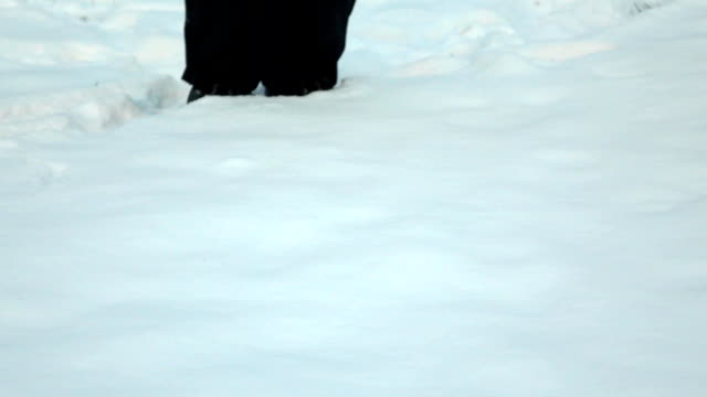 Jump in deep snow, slow motion video