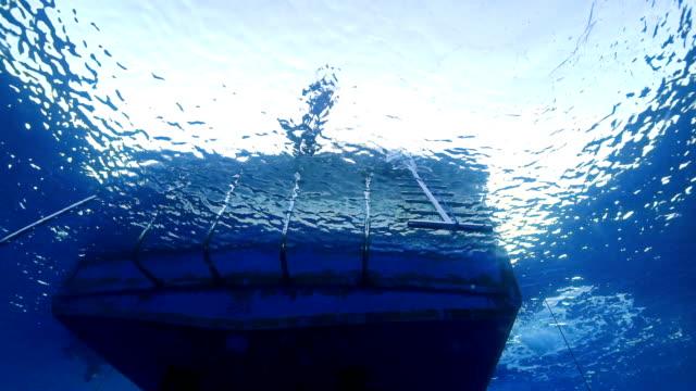 прыжок в - подводное плавание с аквалангом стоковые видео и кадры b-roll