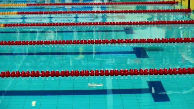 jump into water - başlama çizgisi stok videoları ve detay görüntü çekimi