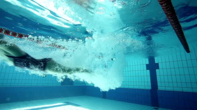 スイミングプールに飛び込む - 筋肉質点の映像素材/bロール