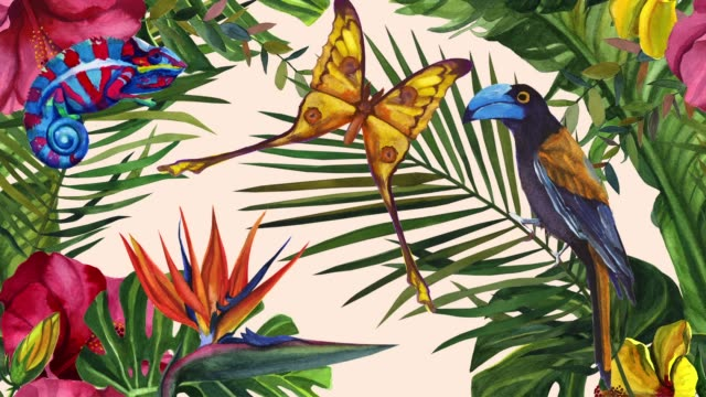 Jungle Madagascar. Exotic Bird, Chameleon and Butterfly. Watercolor tropical wildlife. Hand drawn jungle nature, illustration