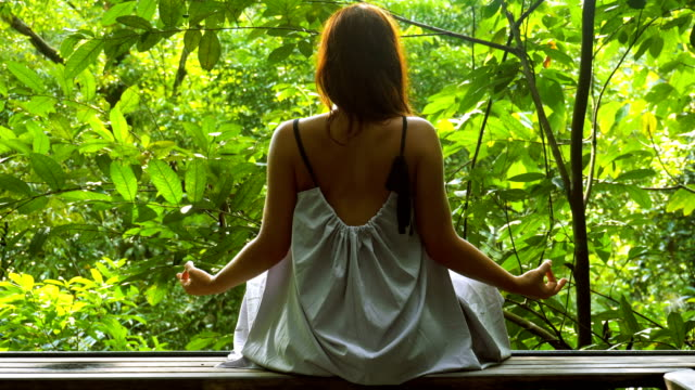 Jungle meditation. Woman admiring rainforest Young woman sitting in lotus pose. Looking at rainforest effortless stock videos & royalty-free footage