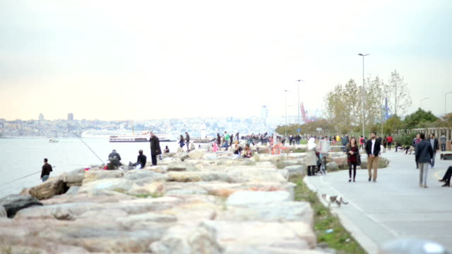 Kadikoy and Moda shores in Istanbul video