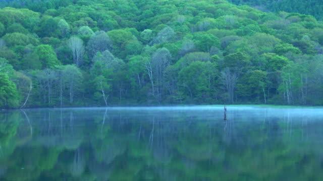 鏡-ike(mirror pond)、長野県 - 絶景点の映像素材/bロール