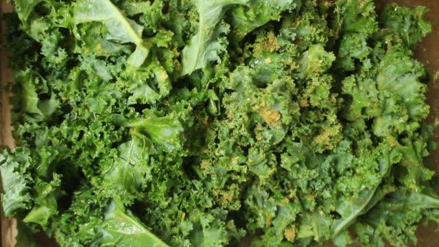 kale chips - vegane lebensmittelzubereitung - grünkohl stock-videos und b-roll-filmmaterial