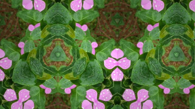 kaleidoscope pattern background - abstract nature stock videos & royalty-free footage