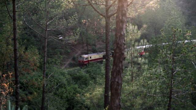 kalka-shimla railway (bergbahnen), indien - himachal pradesh stock-videos und b-roll-filmmaterial