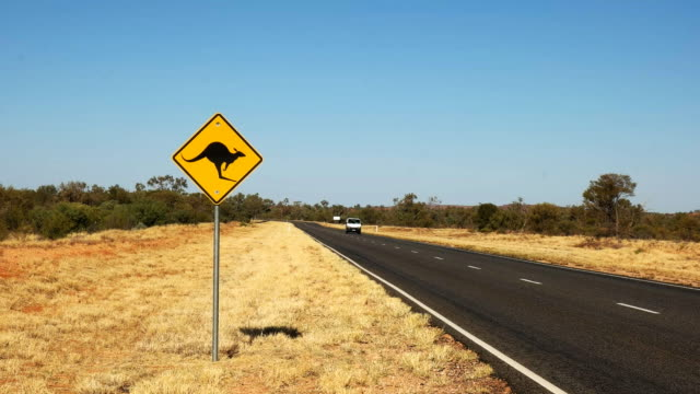 kangaroo road sign a van drives past a kangaroo road sign in outback australia kangaroo stock videos & royalty-free footage