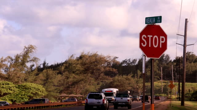 Kauai Island To shoot the townscape jp201806 stock videos & royalty-free footage