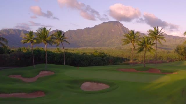 カウアイ風景 - ゴルフ点の映像素材/bロール